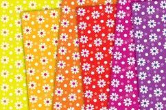 Daisy flower digital paper, rainbow backrounds Product Image 2