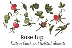 Design with buds, leaves and fruits of rose hip. Product Image 3