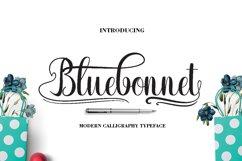 Bluebonnet Product Image 1