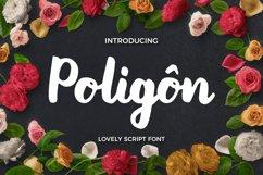 Poligon Product Image 1