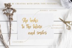 Señorita Handwritten Textured Font Product Image 3