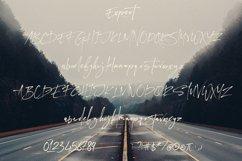 Expert Brush & SVG Font Product Image 2