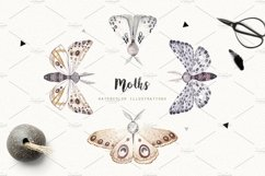 MOTHS and BIRDCAGE watercolor set Product Image 2