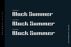 Black Summer Font Family Product Image 3