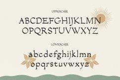 Salacia - Modern Serif Typeface Product Image 6