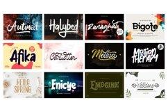 Mega Exclusive Font Bundle - 350 Font Product Image 4