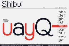 Shibui - Sans Serif font Family Product Image 5
