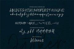 Web Font Jatker - Stylish Brush Font Product Image 5