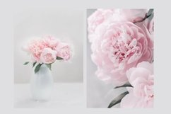 Pink Peonies Collection Product Image 2