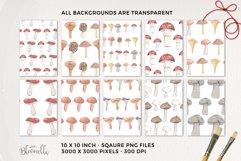 Mushrooms Seamless Patterns Digital Paper Watercolor Fungi Product Image 3