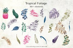 Tropical Foliage Watercolor Set Product Image 23