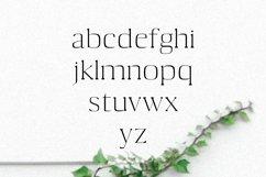 Medric Serif Font Family Product Image 2