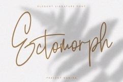Ectomorph   Elegant Signature Font Product Image 1