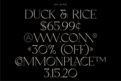Oakland - Decorative Display Serif Product Image 5