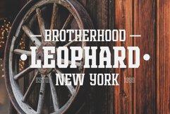 Leophard Font Family Product Image 3