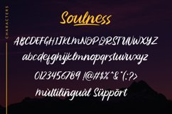 Soulness Product Image 2