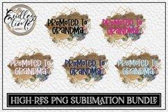 Promoted To Grandma - A Floral PNG Sublimation Design Bundle Product Image 1