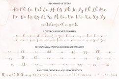 Lovely Script - Lorden Holen Font Product Image 6