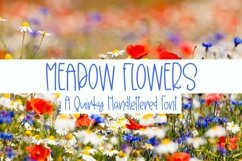 Web Font Meadow Flowers - A Quirky Hand-Lettered Font Product Image 1