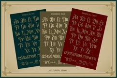 NS Emnhericans Vintage Pairing Fonts Product Image 3