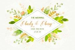 Mangifera The Wedding