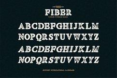 Fiber - Vintage Serif Font Product Image 5