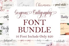 Gorgeous Calligraphy Font Bundle  Limited Time Offer!!! Product Image 1