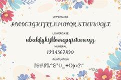 Haylin Script Product Image 6