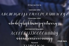 median script Product Image 5