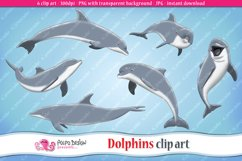 Dolphins clip art Product Image 1