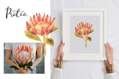 Watercolor tropical boho floral clipart. Flowers and leaves Product Image 2