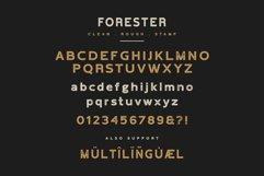 Forester Vintage Sans Serif Product Image 5