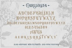 Carllosta - Layered Font and EXTRAS Product Image 3