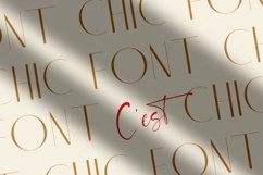 Chic Luxury Font Duo Product Image 5