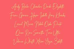 Whistle - Signature font Product Image 3