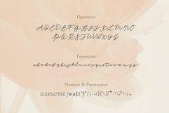 SEINAYA - Signature Font Product Image 5