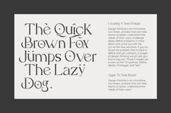 Carlo Elegant Serif Font Product Image 5