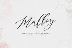 Malloy Product Image 1