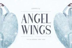 Web Font Angel Wings Product Image 1