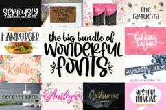 The Big Bundle of Wonderful Fonts Product Image 1