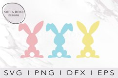Easter Bunny SVG, Bunny SVG, Easter SVG, Cricut Cut Files Product Image 1