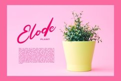 Fabela | Feminie Script Font Product Image 4