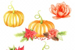 thanksgiving pumkins Watercolor clipart Product Image 3