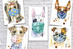 Dogs in face mask Product Image 4