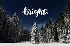 49 Christmas photo overlays Product Image 5