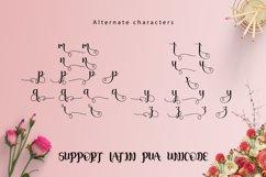 Web Font Junitha Script Product Image 4