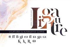 Quizles - Stencil Serif Font Product Image 5
