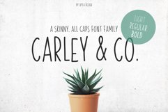 Skinny, handwritten, All Caps font family Carley & Co. Product Image 1