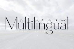 Immensity - ligature serif font family Product Image 5
