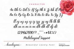 Handayani - Beutiful Script Font Product Image 4